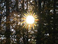 The Happy Sun 2