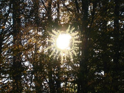 The Happy Sun 1