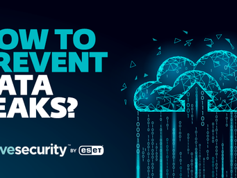 Plugging the holes: How to prevent corporate data leaks in the cloud