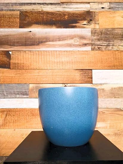 BUD PLANTER BLUE