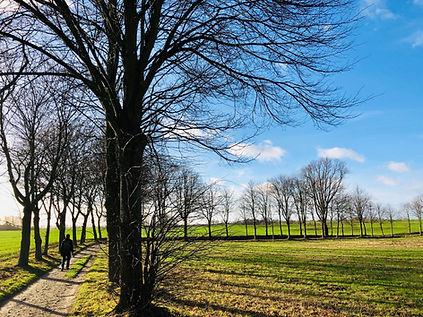 Cantienica Mecklenburg-Vorpommern