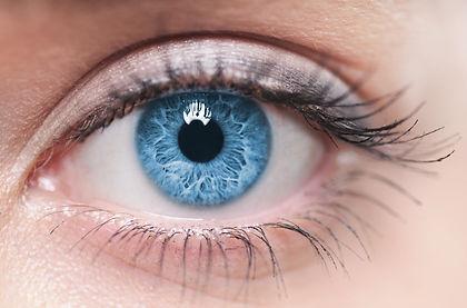 Macro image of human eye.jpg