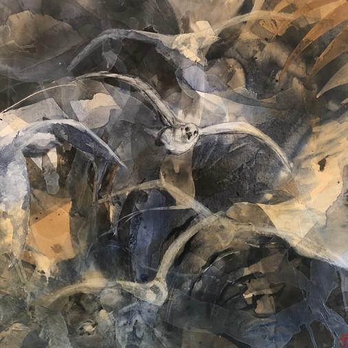 Navigating The Storm - Fiona Johnson