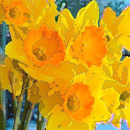 Cracknell, Terri - Daffodils.jpg