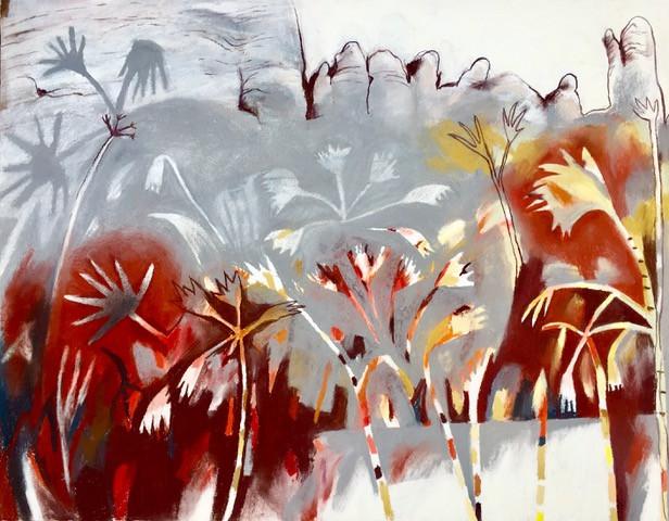Livistonia Palm - Julie Hamann