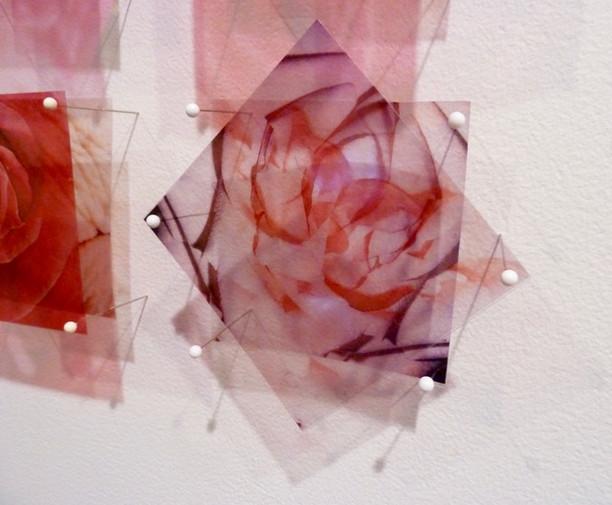 Christine Wiltshier