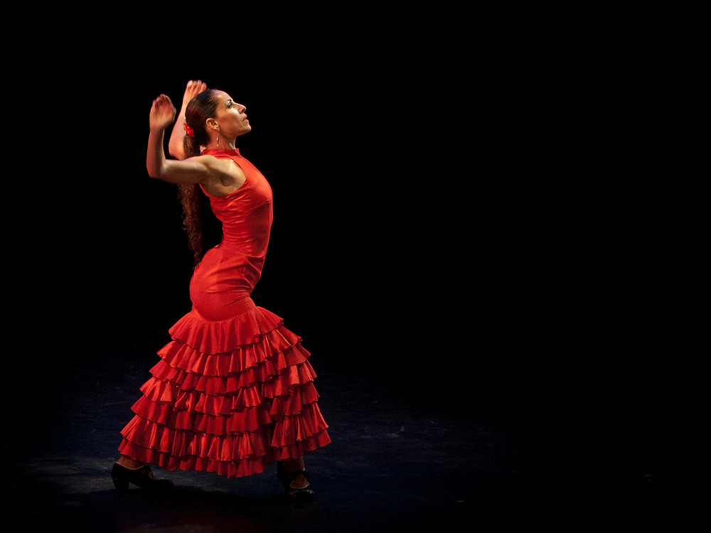 "A Flamenco dancer in the ""traje de flamenca"""