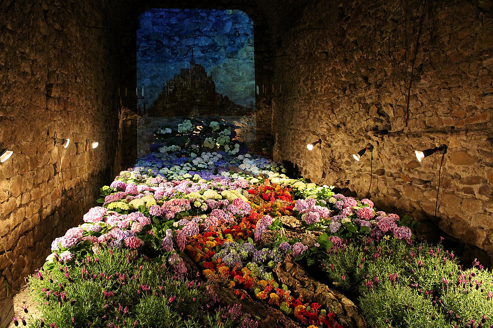 A stunning collection of flowers at the Girona Flower Festival