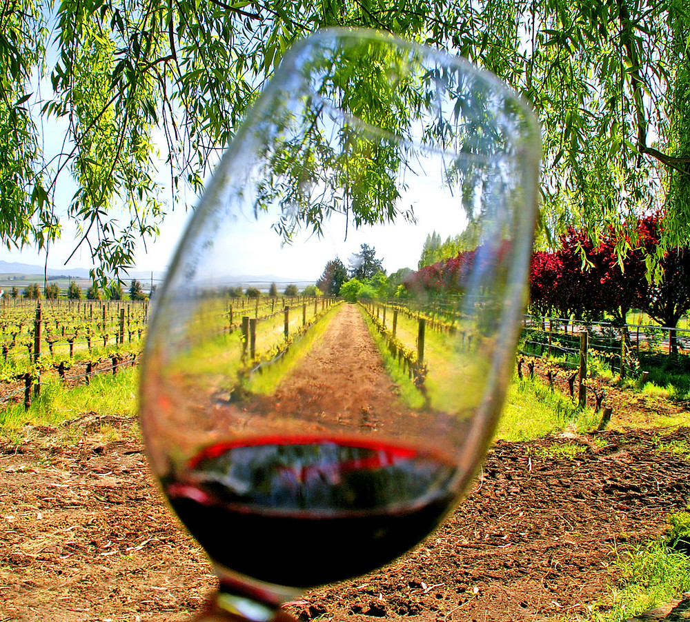La Rioja, Spain is full of endless wine tasting options