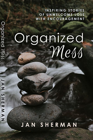 Organized Mess Book