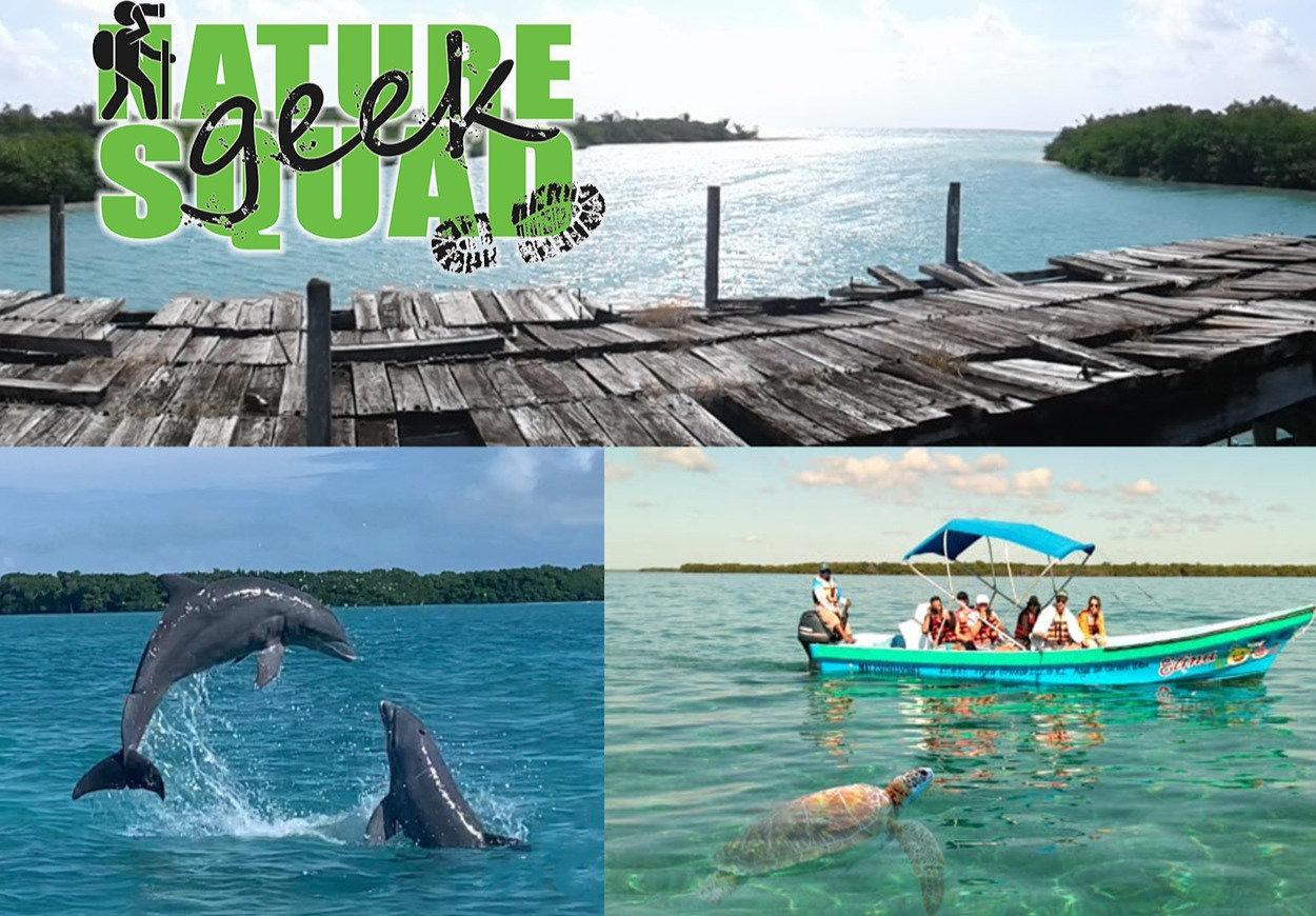 Sian Ka'an Marine Fauna