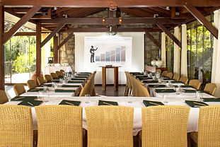 Busiess Conferences at Dionysos Village Hotel