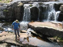 Dartmoor 15