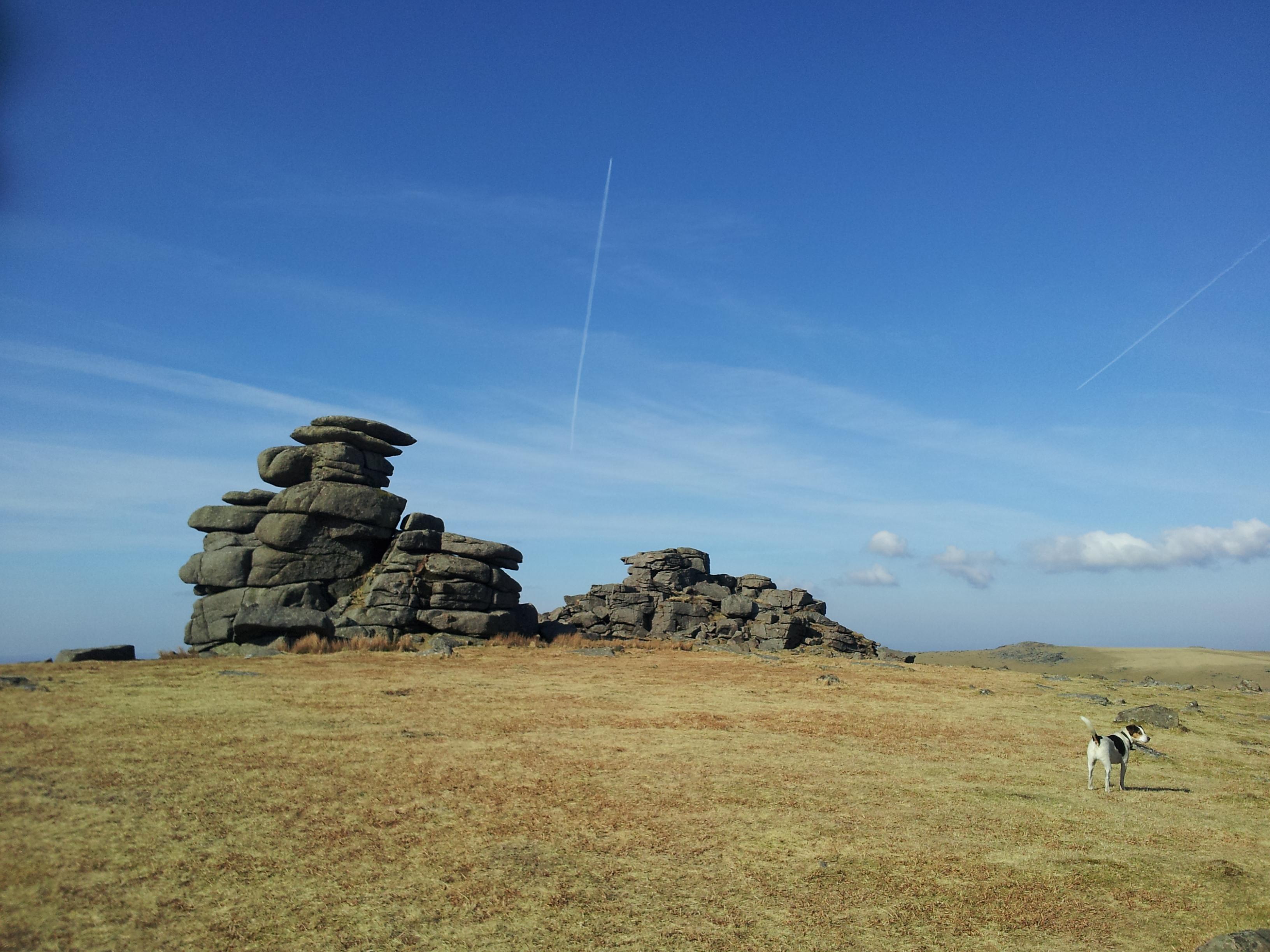 Dartmoor 5
