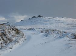 Dartmoor 10