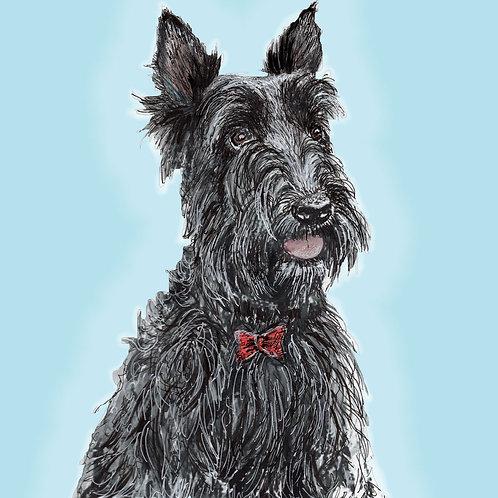 Greeting Card - Scottie Dog