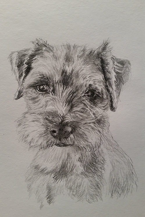 Signed Limited Edition Print - Much Loved Boy