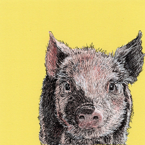 Greeting Card Little Piggie