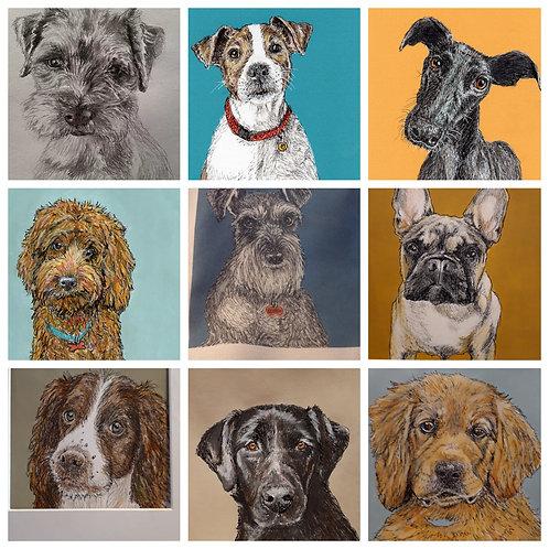 Doggie Card Bundle 5 cards £10, Save £5
