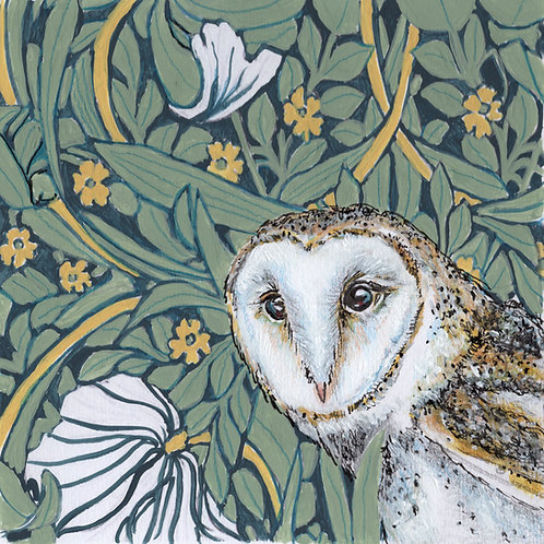 Mounted Print - Barn Owl