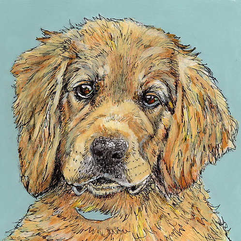 Retriever Greeting Card