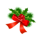 holly%20transparent_edited.png