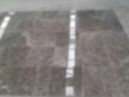 SILVER SHANDOW 2.jpg