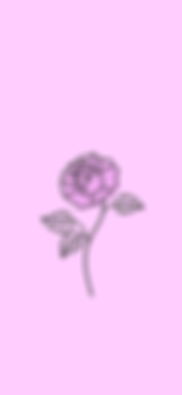 LOCAL_Wallpaper_Flower.png