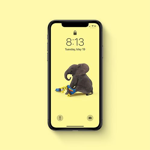BABY ELEPHANT - iPhone Wallpaper