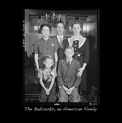 the babcocks cover image.jpg