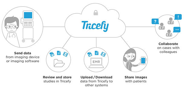 trice-one-service.jpg