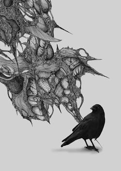 捷克烏鴉-1  A Czech Crow-1