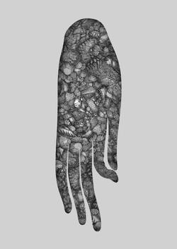 掛手  Hanged hand of Buddha