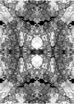 纏結-15 Entanglement-15