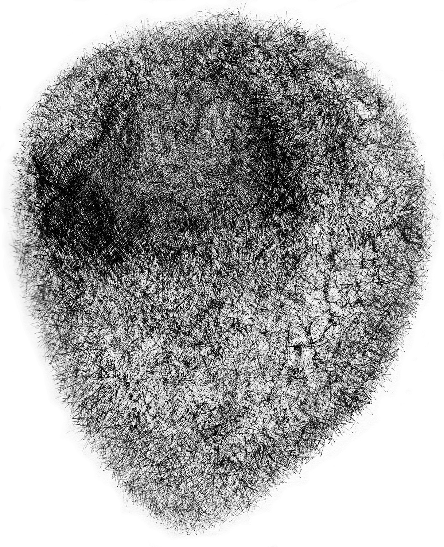 p3114