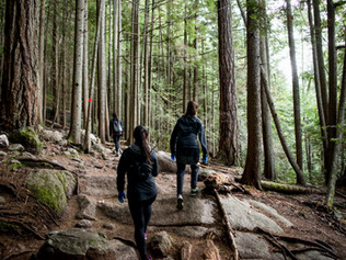 How You Can Lose Weight and Burn Calories by Hiking