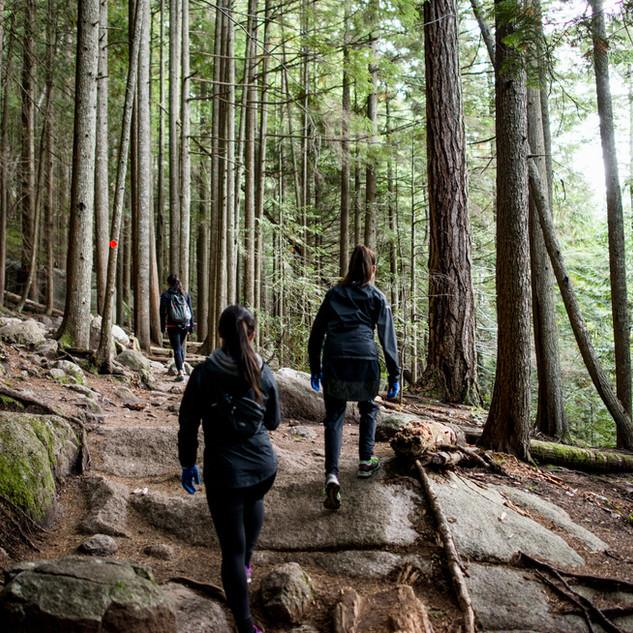A Walk in the Woods, Gatlinburg