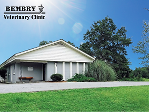 Veterinary Practice for Sale - Perry, GA Area