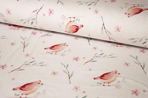 Frühlingsvögel