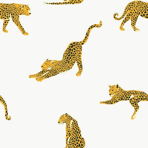 Wildcat I Ökoleder I 0,5m