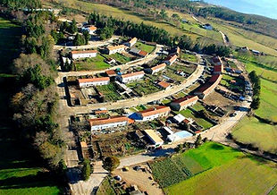 Colonia-Agricola-de-Vascoes_edited.jpg