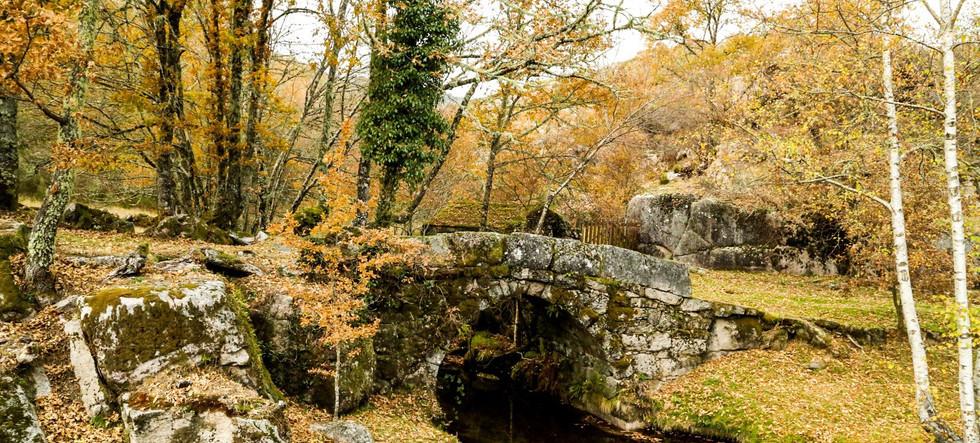 Ponte_velha_da_Assureira.original.jpg