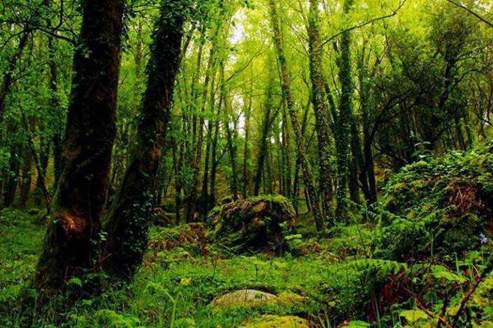 trail3-765x510.jpg