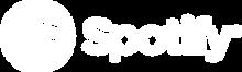 Spotify_logo13.png