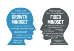 Develop a growth mindset