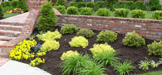 landscaping 7.jpg