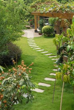 landscaping 11.jpg