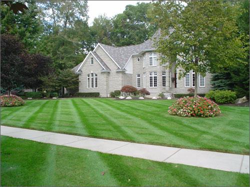 landscaping 10.jpg