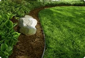 landscaping 4.jpg
