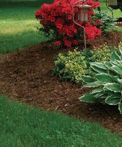 landscaping 1.jpg